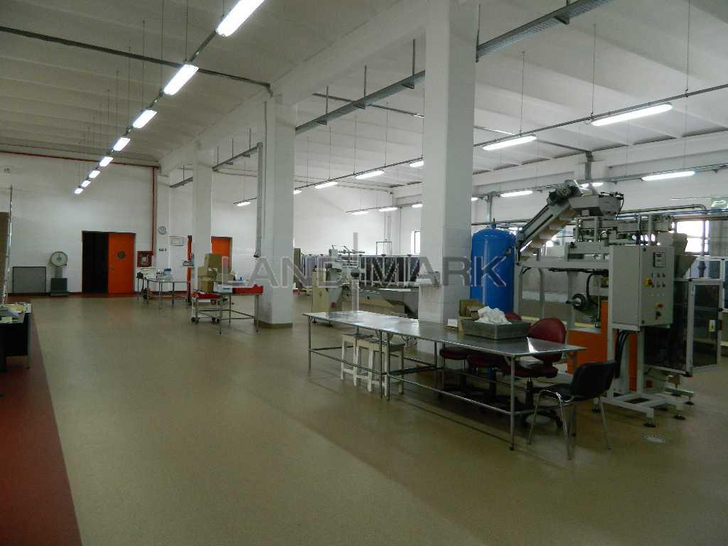 Hala industriala, 1600 mp cu teren 5000 mp ,  zona Torontalului