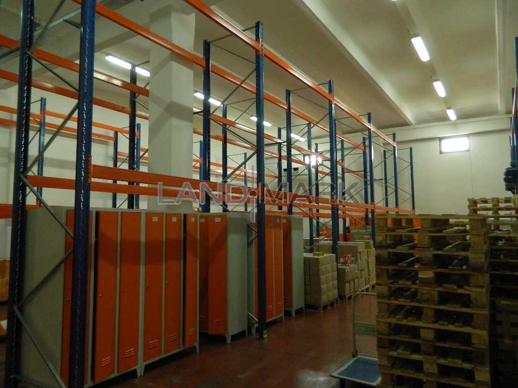 Hala industriala, 1600 mp cu teren 5000 mp , Timisoara Nord Vest