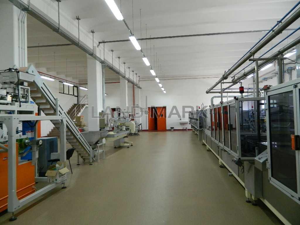 Hala industriala, 1600 mp cu teren 6500 mp , Timisoara Nord Vest