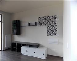Duplex nou, mobiat partial, Mosnita Noua in sat